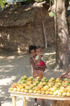 Girl selling mangos alongside a road [madagascar_ankarafantsika_0392]
