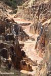 Lavaka of Ankarokaroka [madagascar_ankarafantsika_0754]