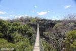Tsingy bridge [madagascar_ankarana_0342]