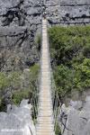 Tsingy bridge [madagascar_ankarana_0348]