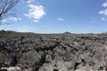 Limestone karst in Madagascar [madagascar_ankarana_0380]