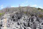 Limestone karst in Madagascar [madagascar_ankarana_0382]