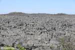 Tsingy in Madagascar [madagascar_ankarana_0430]