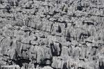 Tsingy in Madagascar [madagascar_ankarana_0431]