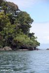 Coastline of Nosy Mangabe [madagascar_maroantsetra_0012]