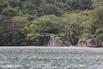 Rainforest on Nosy Mangabe [madagascar_maroantsetra_0024]