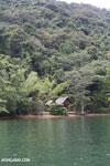 Huts on Nosy Mangabe [madagascar_maroantsetra_0031]