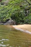 Beach on Nosy Mangabe [madagascar_maroantsetra_0032]