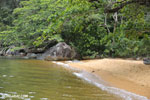 Beach on Nosy Mangabe [madagascar_maroantsetra_0034]