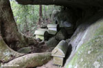 Coffins on Nosy Mangabe [madagascar_maroantsetra_0155]