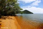 Beach on Nosy Mangabe [madagascar_maroantsetra_0187]