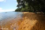Beach on Nosy Mangabe [madagascar_maroantsetra_0190]