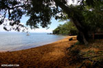 Beach on Nosy Mangabe [madagascar_maroantsetra_0192]