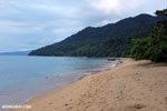 Beach on the Masoala Peninsula [madagascar_masoala_0078]