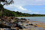 Masoala beach [madagascar_masoala_0363]