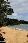 Masoala beach [madagascar_masoala_0366]