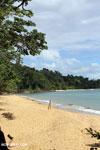 Masoala beach [madagascar_masoala_0367]