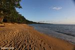 Masoala beach [madagascar_masoala_0368]