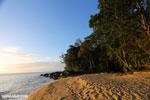 Masoala beach [madagascar_masoala_0371]
