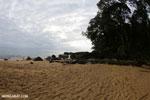 Masoala Peninsula beach