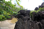 Boulders on a beach in Tampolo Marine Park on the Masoala Peninsula [madagascar_masoala_0821]