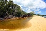 White sand beach on Madagascar's Masoala Peninsula [madagascar_masoala_0873]
