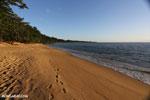 White sand beach at sunset on Madagascar's Masoala Peninsula [madagascar_masoala_0910]