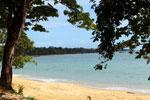 Beach in Madagascar [madagascar_masoala_0997]