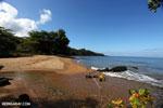 Masoala beach [madagascar_masoala_1059]