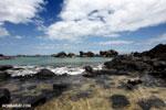 Tampolo Marine Park [madagascar_masoala_1064]