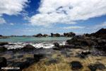 Tampolo Marine Park [madagascar_masoala_1065]