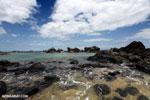 Tampolo Marine Park [madagascar_masoala_1066]