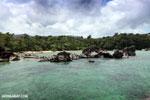 Tampolo Marine Park [madagascar_masoala_1071]