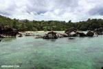 Tampolo Marine Park [madagascar_masoala_1072]