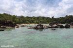 Tampolo Marine Park [madagascar_masoala_1073]