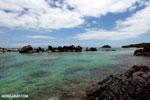 Tampolo Marine Park [madagascar_masoala_1077]