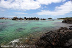 Tampolo Marine Park [madagascar_masoala_1078]
