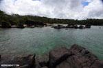 Tampolo Marine Park [madagascar_masoala_1081]