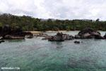 Tampolo Marine Park [madagascar_masoala_1084]