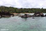 Tampolo Marine Park [madagascar_masoala_1085]