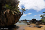 Tampolo Marine Park [madagascar_masoala_1102]