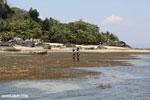 Beach on Nosy Komba [madagascar_nosy_komba_0060]