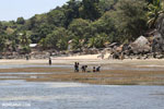 Malagasy kids collecting from tidepools on Nosy Komba