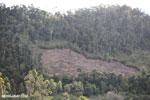 Deforestation near Andasibe-Mantadia National Park [madagascar_perinet_0248]