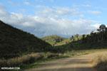 Sherritt's pipeline road [madagascar_perinet_0269]