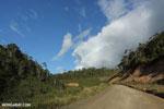 Sherritt's road under which runs its nickle slurry pipeline