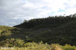 Scrubland outside a protected area in Madagascar