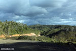 Sherritt's pipeline road [madagascar_perinet_0284]