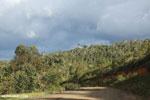 The Sherritt pipeline road