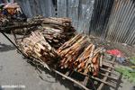 Sugar cane stalks in a market in Toamasina [madagascar_tamatave_0122]